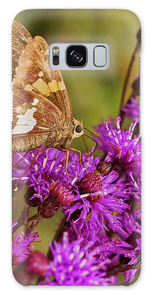 Moth On Purple Flowers Galaxy Case