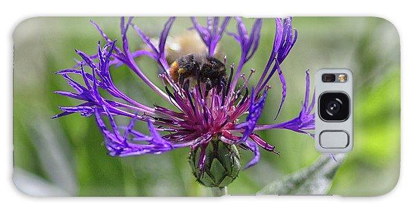 Pollen Galaxy Case - Pollenating by Martin Newman