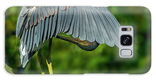 Galaxy Case featuring the photograph Preening Reddish Heron by Donald Brown