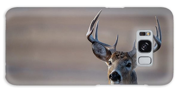 Rocky Mountain Deer Galaxy Case