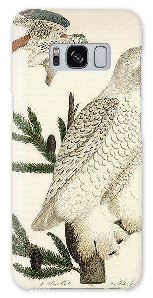 1. Snow Owl. 2. Male Sparrow-hawk. Galaxy Case
