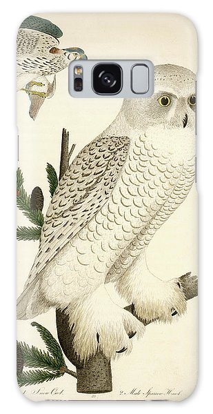 1. Snow Owl. 2. Male Sparrow-hawk. Galaxy Case