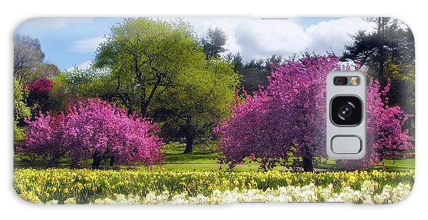 Spring Fever Galaxy Case