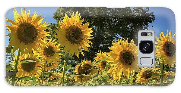 Sunlit Sunflowers Galaxy Case