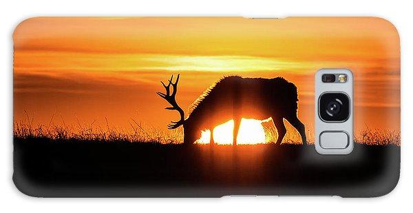 Sunrise Elk Galaxy Case