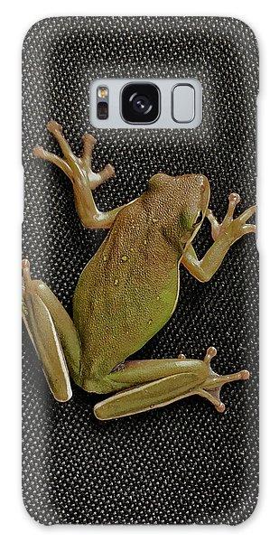 Tree Frog Galaxy Case