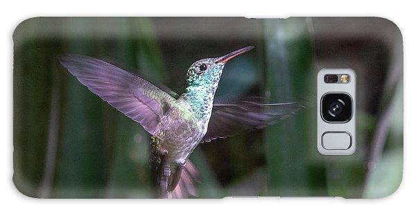 Versicolored Emerald Hummingbird Hovers Galaxy Case