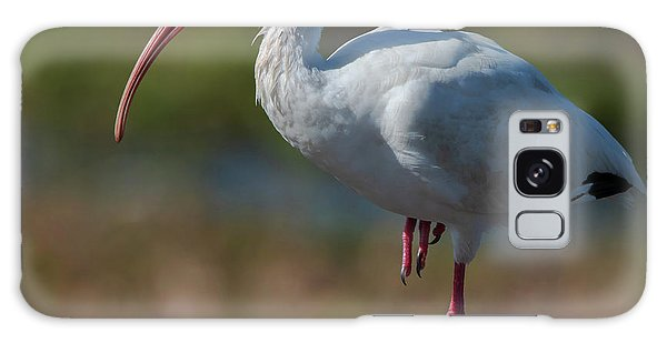 White Ibis Galaxy Case