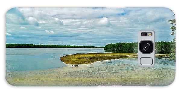 Wildlife Refuge On Sanibel Island Galaxy Case
