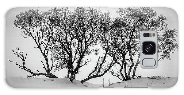 Expanse Galaxy Case - Winter Trees by Inge Johnsson