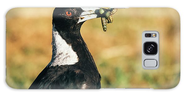 Galaxy Case featuring the photograph Australian Magpie Outdoors by Rob D
