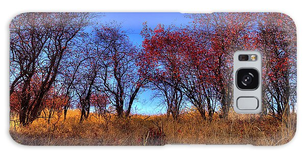 Galaxy Case featuring the photograph Autumn Light by David Patterson