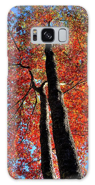 Galaxy Case featuring the photograph Autumn Reds by David Patterson