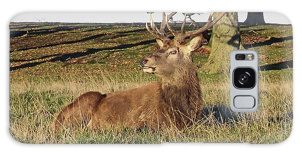 28/11/18  Tatton Park. Stag In The Park. Galaxy Case