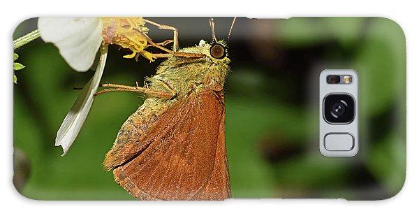 Skipper Butterfly Galaxy Case