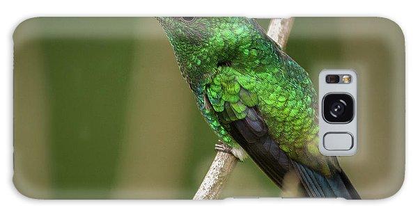 Western Emerald Jardin Botanico Del Quindio Calarca Colombia Galaxy Case