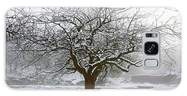 30/01/19  Rivington.  Japanese Pool. Snow Clad Tree. Galaxy Case
