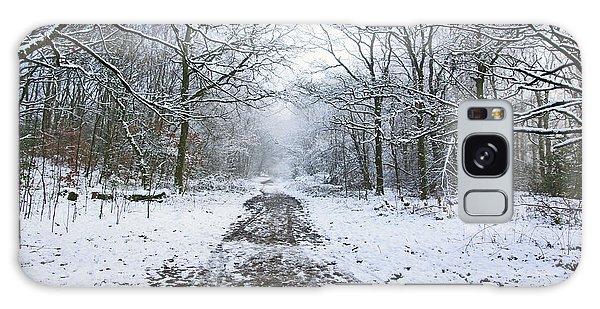 30/01/19  Rivington. Lower Barn. Arboretum Path. Galaxy Case