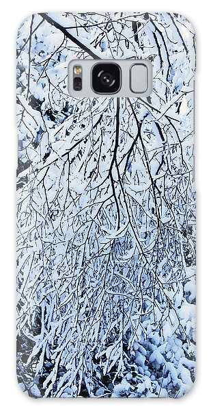 30/01/19  Rivington. Snow Covered Branches. Galaxy Case