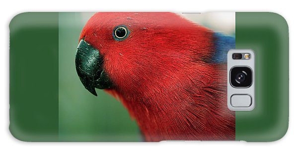 Galaxy Case featuring the photograph Crimson Rosella by Rob D