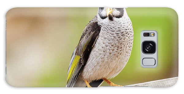 Galaxy Case featuring the photograph Noisy Miner Bird By Itself by Rob D