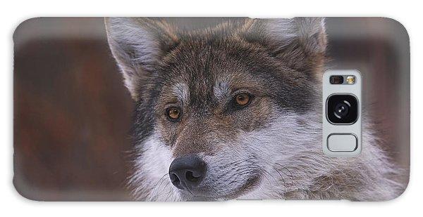 Wolf Galaxy Case