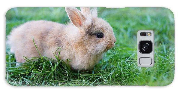 Furry Galaxy Case - A Bunny Sitting On Green Grass by Zurijeta