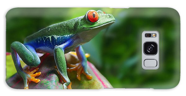 Alms Galaxy Case - A Colorful Red-eyed Tree Frog In Its by Brandon Alms