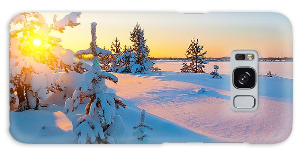 Pine Branch Galaxy Case - A Colorful Sunset On A Winter Evening by Leonid Ikan