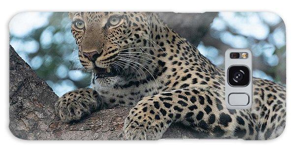 A Focused Leopard Galaxy Case