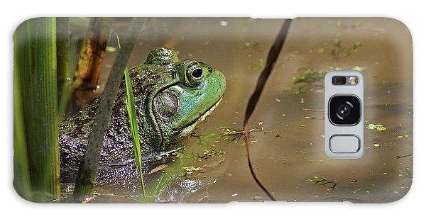 A Frog Waits Galaxy Case