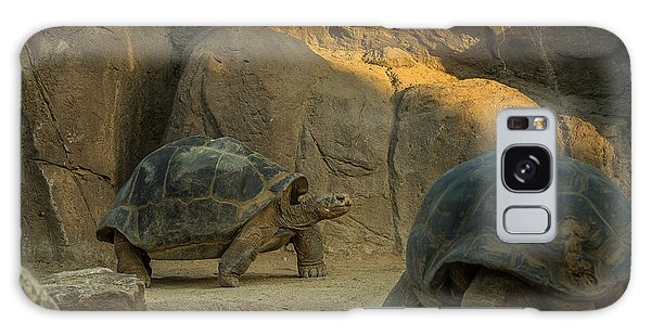 Turtle Galaxy Case - A Giant Galapagos Turtles On A Walk by Awol666