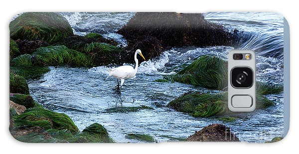 A Great Egret Watches The Incoming Tide Galaxy Case