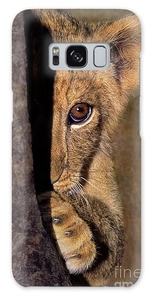 A Lion Cub Plays Hide And Seek Wildlife Rescue Galaxy Case