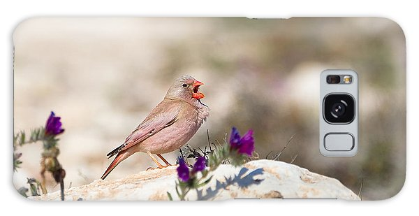 Perches Galaxy Case - A Male Trumpeter Finch Bucanetes by Andrew M. Allport