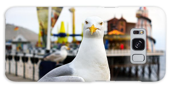Seagulls Galaxy Case - A Seagull At Brighton, Uk. Shallow by Bobo Ling