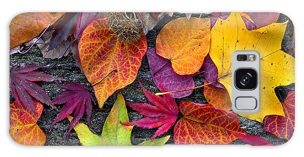Horizontal Galaxy Case - Abstract Background Of Autumn Leaves by Artens