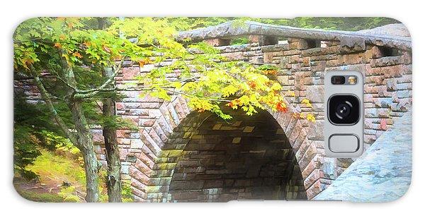 Acadia National Park - Amphitheater Bridge Galaxy Case
