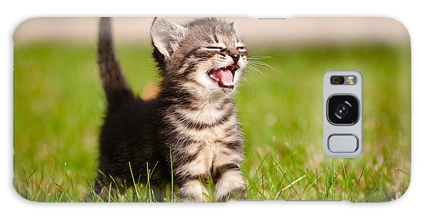 Tabby Galaxy Case - Adorable Meowing Tabby Kitten Outdoors by Otsphoto