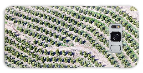 United States Galaxy Case - Aerial View Of Orange Grove In Ventura by Joseph Sohm