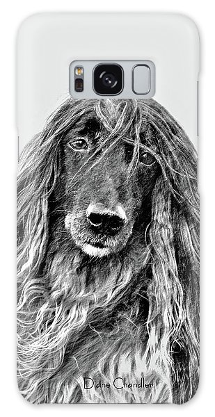 Afghan Hound 3 Galaxy Case