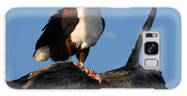 Claws Galaxy Case - African Fish Eagle Haliaeetus Vocifer by Johan Swanepoel
