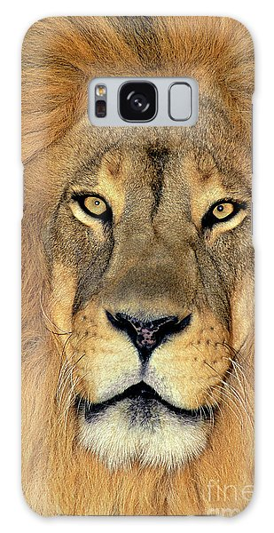 African Lion Portrait Wildlife Rescue Galaxy Case
