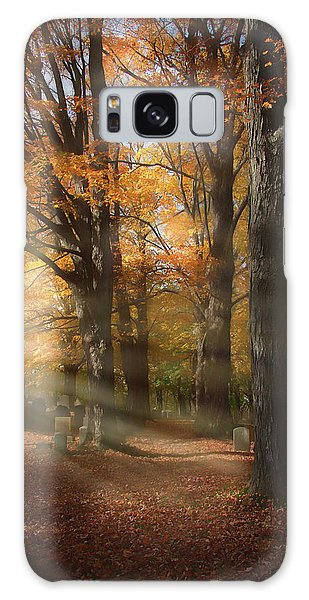 Afternoon Light In Fall Colors Of New England Galaxy Case