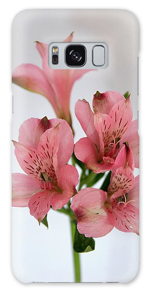Alstroemeria Up Close Galaxy Case