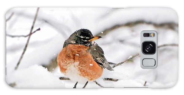 American Robin In The Snow Galaxy Case