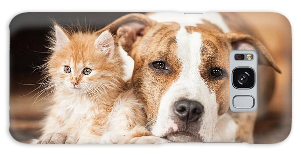 Tabby Galaxy Case - American Staffordshire Terrier Dog With by Grigorita Ko