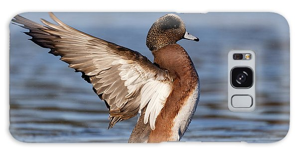 American Wigeon Delight Galaxy Case