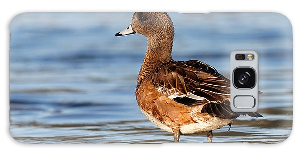 American Wigeon Standing Alert Galaxy Case