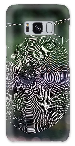 Another Web Galaxy Case